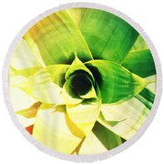 Tunnel Of Green Round Beach Towel
