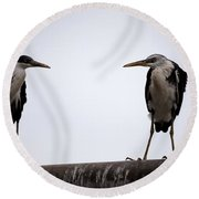 Two Of A Different Kind Round Beach Towel