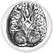Vesalius: Brain Round Beach Towel