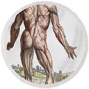 Vesalius: Muscles, 1543 Round Beach Towel