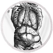 Vesalius: Thoracic Cavity Round Beach Towel