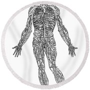 Vesalius: Venous System Round Beach Towel