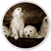 Vintage Festive Puppies Round Beach Towel