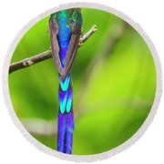Violet-tailed Sylph Round Beach Towel