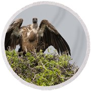 Vultures With Full Crops Round Beach Towel