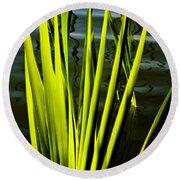 Water Reeds Round Beach Towel
