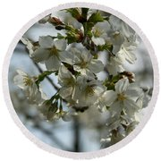 White Cherry Blossoms Round Beach Towel