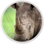 White Rhinoceros Round Beach Towel by Johan Swanepoel