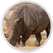 White Rhinoceros Round Beach Towel