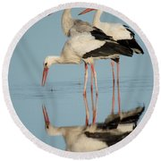 White Storks Ciconia Ciconia In A Lake Round Beach Towel
