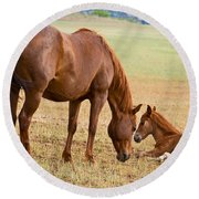 Wild Horse Mother And Foal Round Beach Towel