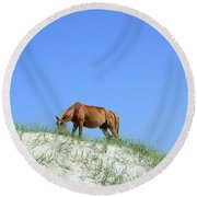 Wild Horses Of Corolla Round Beach Towel