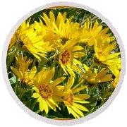 Wild Okanagan Sunflowers Round Beach Towel