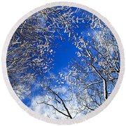 Winter Trees And Blue Sky Round Beach Towel