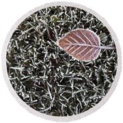 Winter With Frosted Leaf On Frozen Grass Round Beach Towel