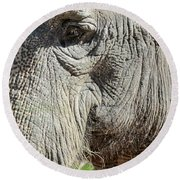 Wise One,elephant  Round Beach Towel