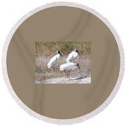Wood Storks Round Beach Towel