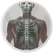 X-ray Skeleton Round Beach Towel