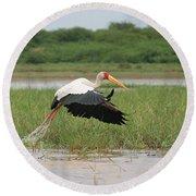 Yellow-billed Stork Mycteria Ibis Round Beach Towel