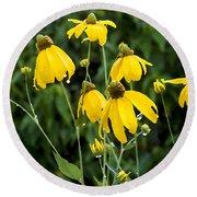 Yellow Cone Flowers Rudbeckia Round Beach Towel
