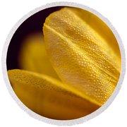 Yellow Flower Macro Round Beach Towel