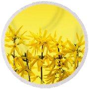 Yellow Forsythia Flowers Round Beach Towel
