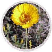 Yellow Wildflower Round Beach Towel