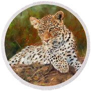 Young Leopard Round Beach Towel
