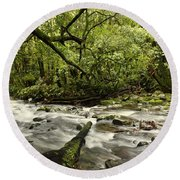 Jungle Stream Round Beach Towel