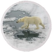 Polar Bear Crossing Ice Floe Round Beach Towel