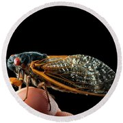 A Detailed View Of A Brood II Cicada Round Beach Towel