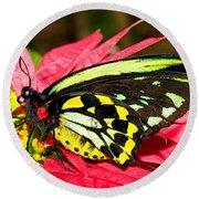 Cairns Birdwing Butterfly Round Beach Towel