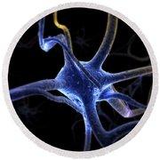 Neurons Round Beach Towel