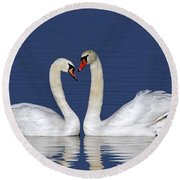 110307p053 Round Beach Towel