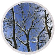 110414p088 Round Beach Towel