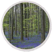 110506p233 Round Beach Towel