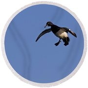 110613p205 Round Beach Towel