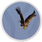 110613p223 Round Beach Towel