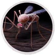 Anopheles Mosquito Round Beach Towel