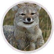 Patagonia Grey Fox Round Beach Towel