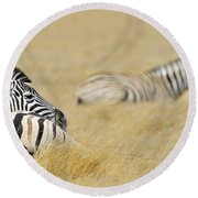 120118p096 Round Beach Towel