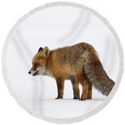 130201p056 Round Beach Towel
