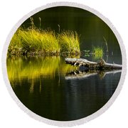 131005b-029 Forest Pond 2 Round Beach Towel