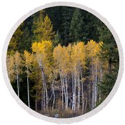 Guardians Of Trestle Creek  -  141102a-138 Round Beach Towel