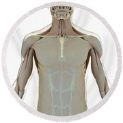 The Muscle System Round Beach Towel