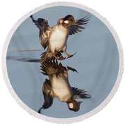 Birds Of The World Round Beach Towel