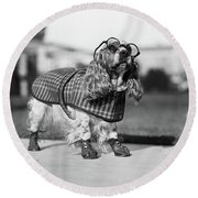 1930s Cocker Spaniel Wearing Glasses Round Beach Towel