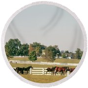 1990s Small Group Of Horses Round Beach Towel