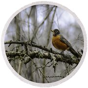 1st Robin Of Spring Round Beach Towel