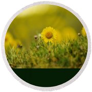 Alpine Flowers Round Beach Towel